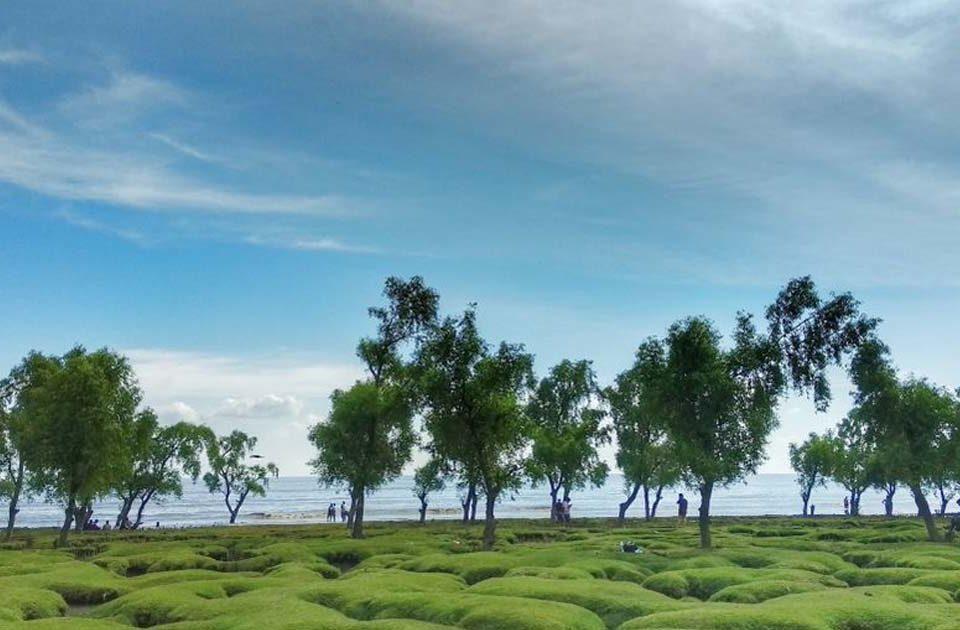 Guliakhali Beach